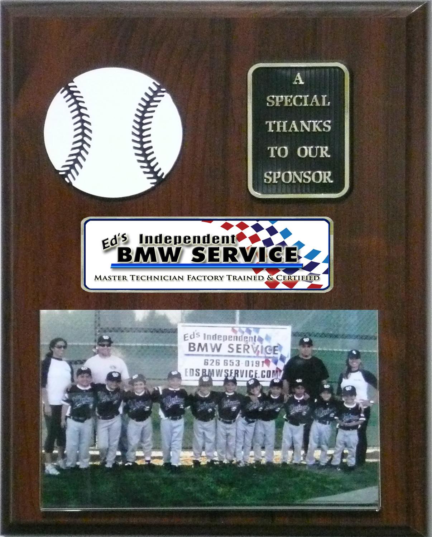 plaque for sponsoring a Little League baseball team